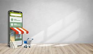 Web Design Services - Online Store