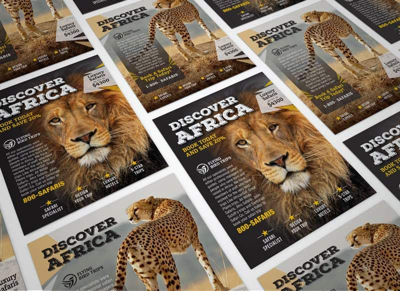 Discover Africa Flyer